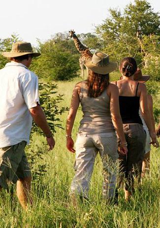 walking-safaris-4